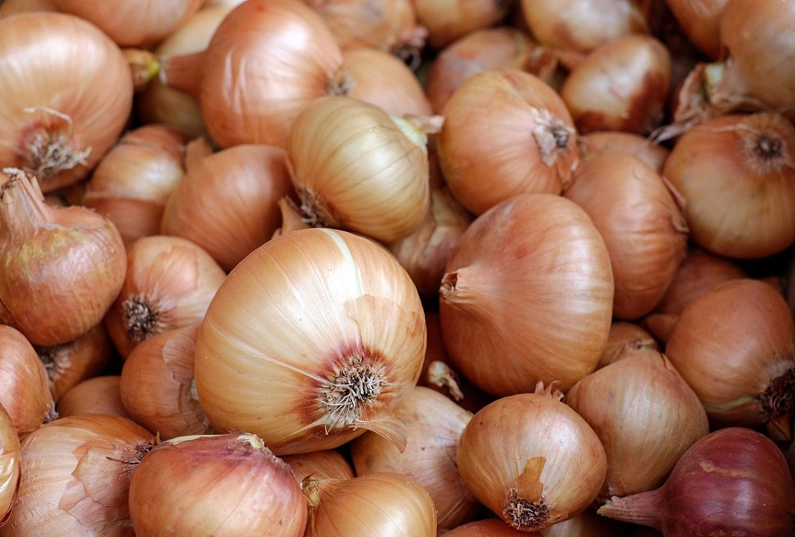 """Why onion has become the """"new gold"""" in Nigeria"""