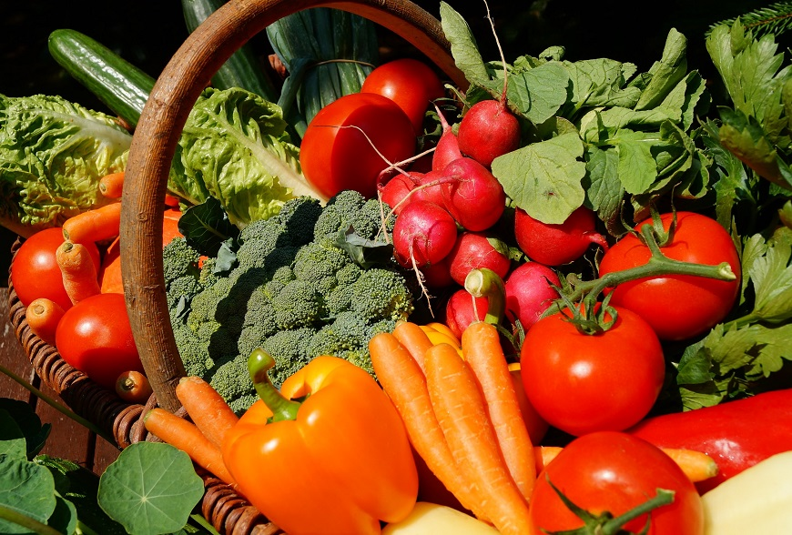 Vegetables, an important part of our daily diet